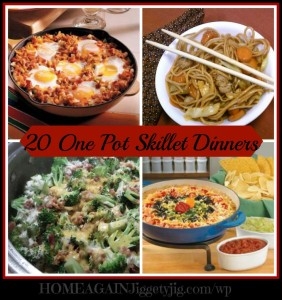 20-one-pot-skillet-dinners1-961x1024[1]