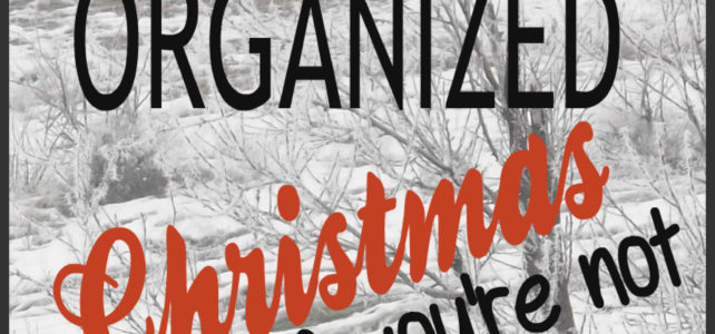 HAVE A RELAXED, ORGANIZED CHRISTMAS – Even if You're Not