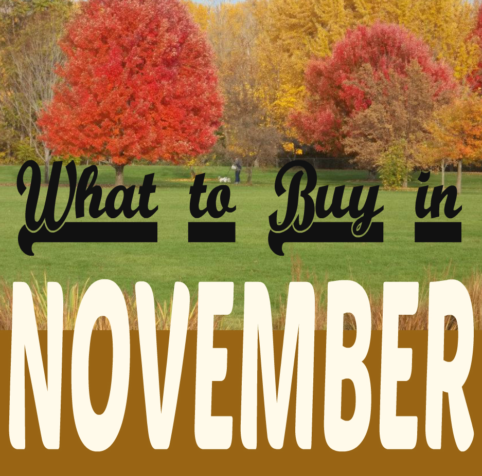 what-to-buy-in-november